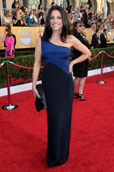 Julia Louis-Dreyfus - Screen Actors Guild Awards - 1/18/14